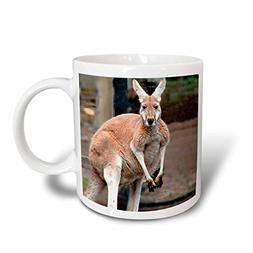 3dRose Red Kangaroo Mug, 11-Ounce